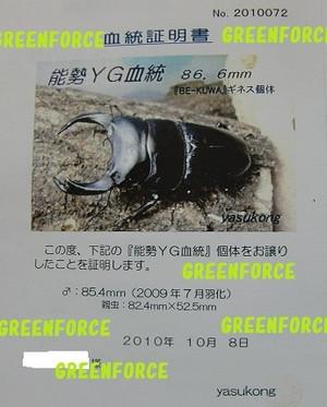 Yasukong85480