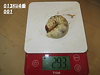 Ku4001293