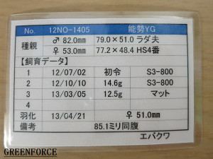 Yg510851_2
