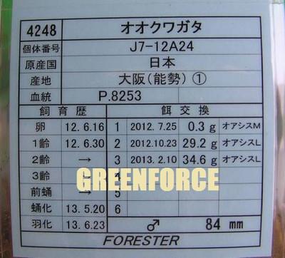 J712a24