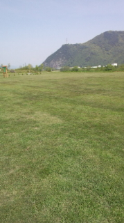 爽やかな風と芝生